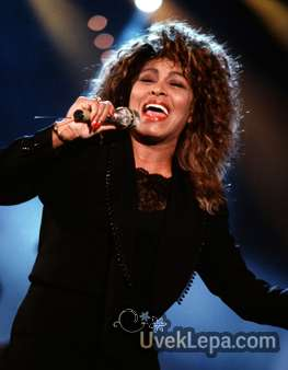 ... turner hairstyles tina turner hair color tina turner hair picture